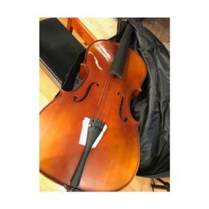 Cello Gewa Standard | Transportskadad