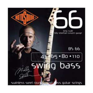 Rotosound BS66 Swing Bass 66 | Billy Sheehan