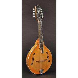 Richwood RMA-110 Master Series | Vintage Sunburst