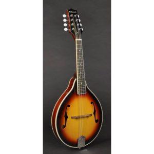 Richwood RMA-60 Master Series | Vintage Sunburst