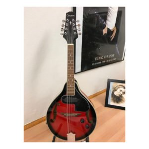 Mandolin Tenson Electric | Demoex