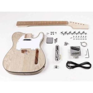 Boston TE-45 | Tele DIY Kit